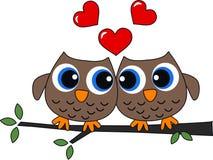 Twee uilen in liefde Stock Foto's