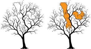 Twee verborgen eekhoorns op de boom, beeld - riddle met oplossing Royalty-vrije Stock Fotografie