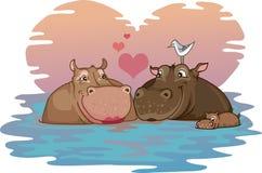 Twee Hippos in Liefde Stock Fotografie