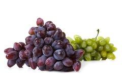 Twee verscheidenheden rijpe druiven op een witte achtergrond Royalty-vrije Stock Afbeelding