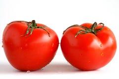 Twee verse tomaten Stock Foto's