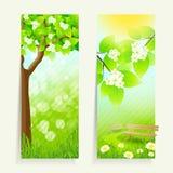 Twee Verticale Banners Stock Foto's