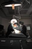 Twee veterinaire chirurgen in werkende ruimte Stock Afbeeldingen