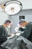 Twee veterinaire chirurgen in werkende ruimte Royalty-vrije Stock Afbeelding