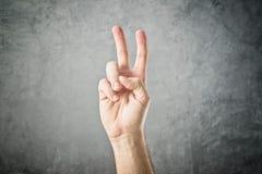 Twee vingers in de lucht Royalty-vrije Stock Afbeeldingen