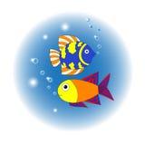 Twee vissen Royalty-vrije Stock Fotografie