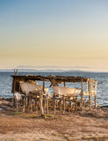Twee vissersboten Stock Foto
