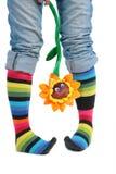 Twee voet in multi-coloured sokken en zonnebloem Royalty-vrije Stock Afbeelding
