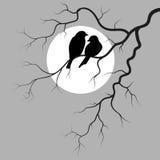 Twee Vogels royalty-vrije illustratie