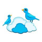 Twee Vogels Royalty-vrije Stock Foto's