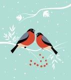 Twee vogels bij de winter. royalty-vrije illustratie