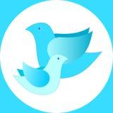 Twee vogels in een cirkel Stock Foto's