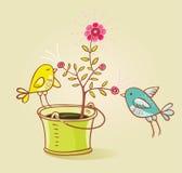 Twee vogels en bloemaroma Stock Afbeeldingen