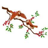 Twee vogels op een tak met rode die bessen op witte achtergrond worden geïsoleerd De vectorillustratie van het beeldverhaalclose- vector illustratie