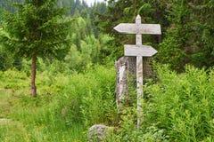 Twee voorzien in het bos van wegwijzers wijzen op richting royalty-vrije stock afbeeldingen