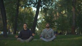 Twee vrienden die in centraal park, lotusbloem mediteren stellen, yogaasana, harmonieonderzoek stock videobeelden
