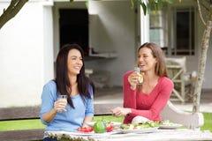 Twee vrienden die en lunch samen spreken hebben Stock Afbeelding