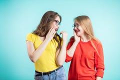 Twee vrienden hebben pret sprekend, het vertellen geheimen, nieuws aan elkaar Positieve emoties, mededeling Royalty-vrije Stock Afbeeldingen