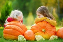 Twee vrij kleine zusters die pret samen op een pompoenflard hebben Stock Afbeeldingen