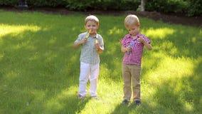 Twee vrolijk klein broersspel met zeepbels in het park op groen gras stock footage