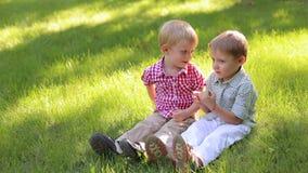 Twee vrolijke kleine jongens van 4 jaar oud zitten in het park op het gras stock footage