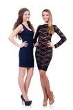 Twee vrouwelijke geïsoleerde vrienden Royalty-vrije Stock Afbeelding