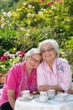 Twee vrouwelijke hogere vrienden die in tuin zitten royalty-vrije stock afbeelding