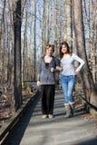 Twee Vrouwen die Wapens en het Lopen verbinden Stock Afbeelding