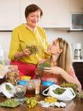 Twee vrouwen met droge kruiden Stock Foto
