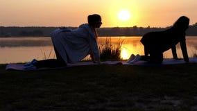 Twee Vrouwen worden geschoten in Profiel op Hun Fours Doend Yoga bij Zonsondergang in slo-Mo stock footage