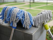 Twee vuil menigte-zonbad van was schoon bij openluchtpark of GA Stock Foto