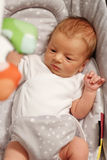 Twee Weken Oude Pasgeboren Baby Stock Foto
