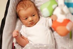 Twee Weken Oude Pasgeboren Baby Royalty-vrije Stock Foto