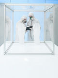 Twee wetenschappers in het laboratorium Stock Foto