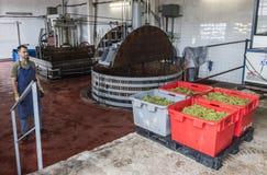 Twee Wijnpersen Dizy Frankrijk Stock Fotografie