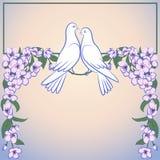 Twee wit duiven en decor van tot bloei komende appelboom Royalty-vrije Stock Fotografie