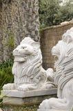 Twee witte gebeeldhouwde leeuwen Stock Foto
