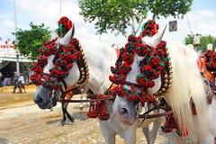 Twee witte paarden in de Markt van Sevilla, Andalusia, Spanje Royalty-vrije Stock Fotografie