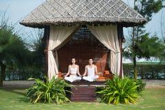 Twee yogis royalty-vrije stock foto's