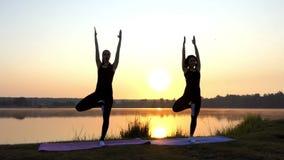Twee Young Women do Yoga Tree Oefeningen bij Zonsondergang op een Meerbank in slo-Mo stock footage