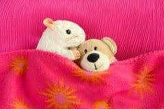 Twee zacht speelgoed die in bed knuffelen royalty-vrije stock afbeeldingen
