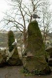 Twee zeemeeuwen vanaf de bovenkant van sommige stenen die de horizon bekijken Royalty-vrije Stock Foto's