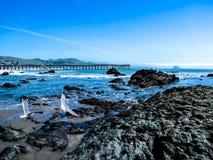 Twee Zeemeeuwenvlieg bij de Pijler van Cayucos Californië stock fotografie
