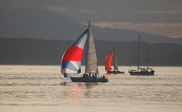 Twee Zeilboten die aan de afwerkingslijn rennen op Puget Sound Stock Afbeeldingen