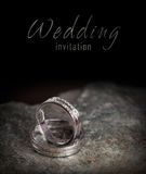 Twee zilveren bruiloftringen op rots Royalty-vrije Stock Foto's