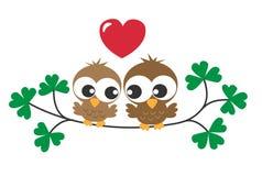 Twee zoete bruine uilen in liefde Stock Foto