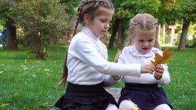 Twee zusters in de herfst parkeren stock footage