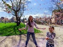 Twee zusters die met dalende bloemblaadjes op de zon spelen royalty-vrije stock afbeelding