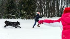 Twee zusters die in sneeuw met newfoundlanderhond spelen stock fotografie