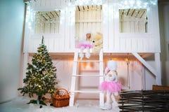 Twee zusterstweelingen in de kostuums van hondpoedels voor het Nieuwjaar Meisjes die op de portiek van een witte blokhuis verfraa stock foto